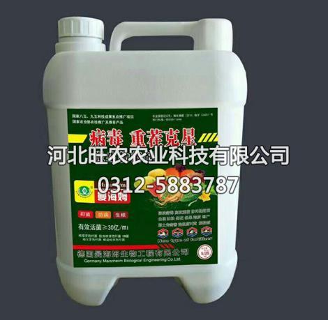 微生物菌剂生产商
