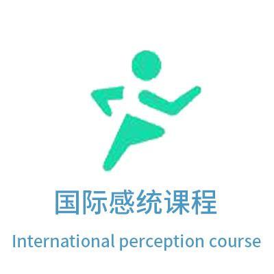 国际感统课程