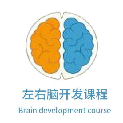 左右脑开发课程