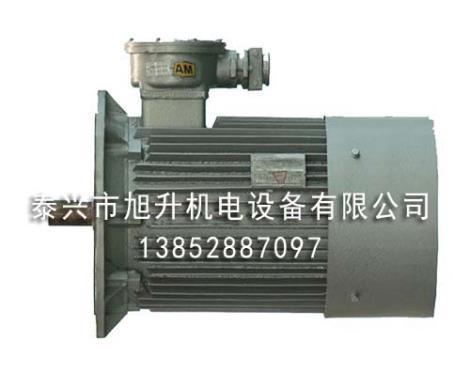 YBS系列煤矿输送机专用隔爆型三相异步电动机