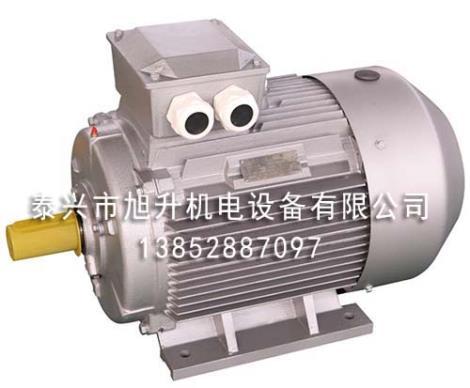 YE2系列高效率三相异步电动机价格