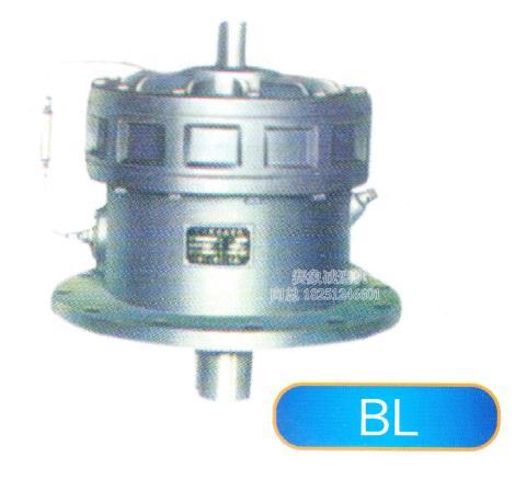 BL型摆线针轮减速机供货商