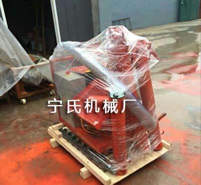 重庆二次构造柱泵上料机