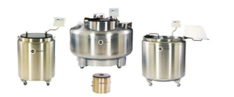 MVE Stock 系列液氮储存罐