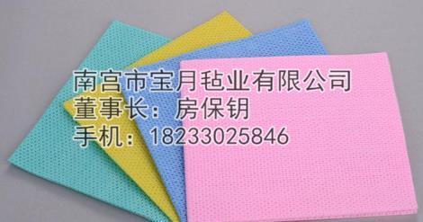 椰壳抹布供货商