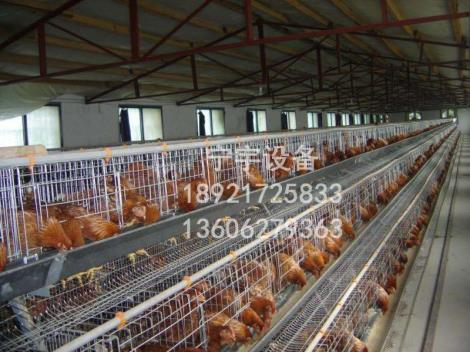 鸡笼生产商