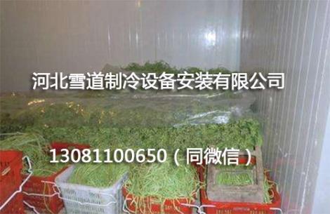 蔬菜保鲜冷库安装