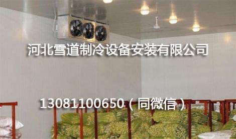 蔬菜保鲜冷库安装工程