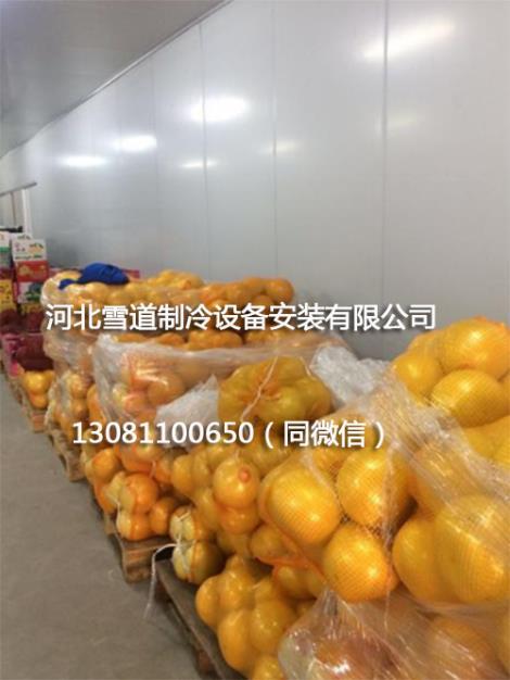 水果保鲜库安装工程