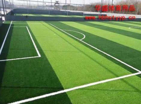 足球场草坪生产商