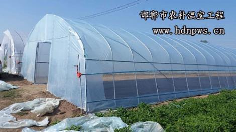 简易钢架温室