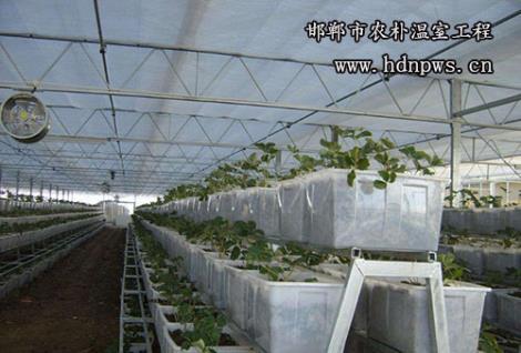阳光板温室厂家定制