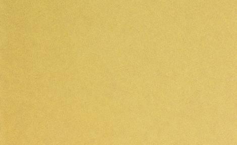 TEP时代壳 - #1 Plaster Flex
