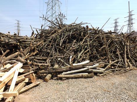 江蘇木材加工