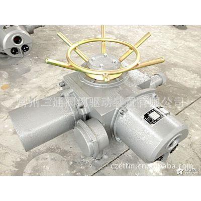 电动头 (调节型)DZWT20