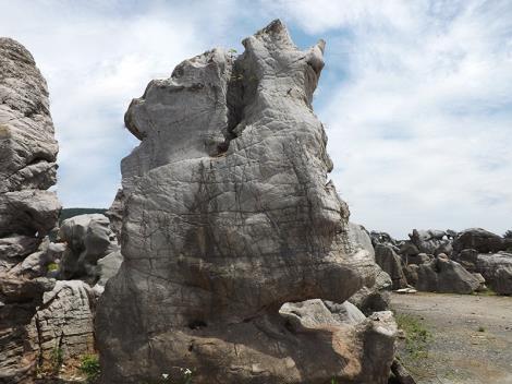 天然景觀石