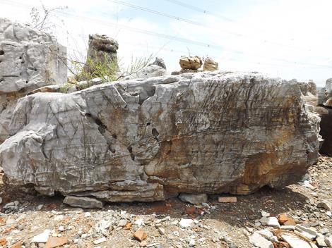 景觀石設計
