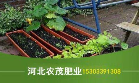 盆栽有机肥