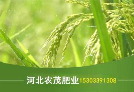 庄稼有机肥直销