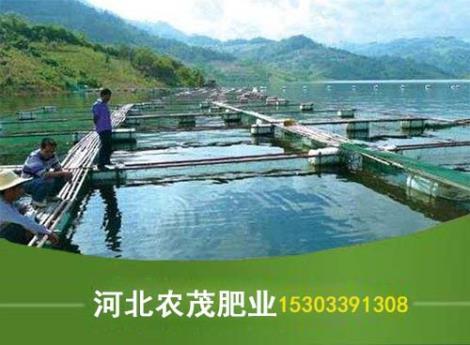 水产养殖用有机肥直销