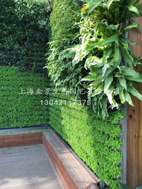 植物墙工程