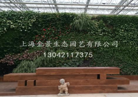 艺术立体绿化栽培系统