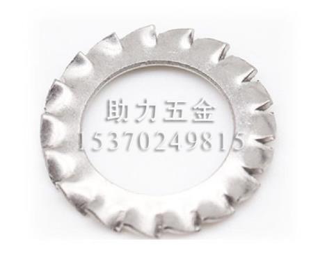 304不锈钢外锯齿锁紧垫圈GB862.2