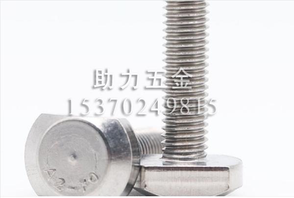 316不锈钢T型螺栓