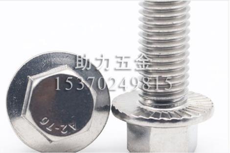 316不锈钢法兰面螺栓DIN5789