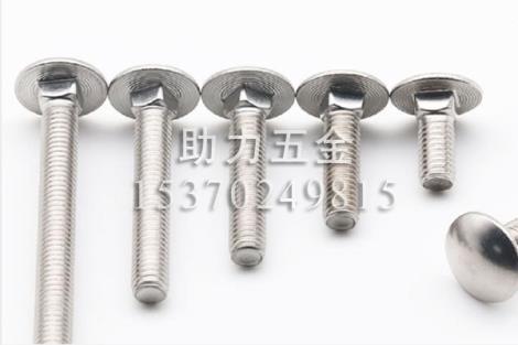 316不锈钢马车螺栓DIN603