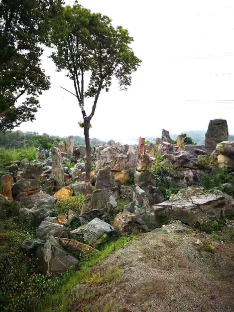 園林景觀石