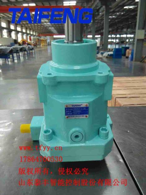 TFB1V/1X斜盤式柱塞泵