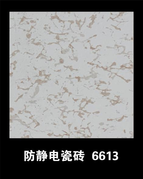 防静电瓷砖6613