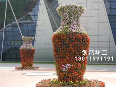 景觀花柱花球直銷