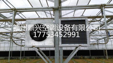 滨州生产大棚暖风机