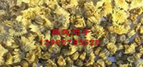 菊花烘干机厂家