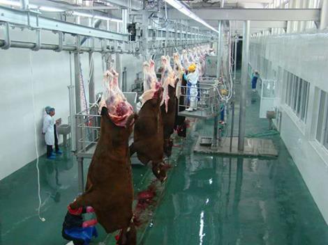 牛羊屠宰设备定制