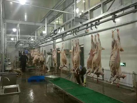 养殖设备供货商