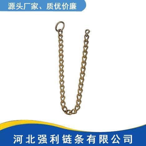 带圈扭锁链