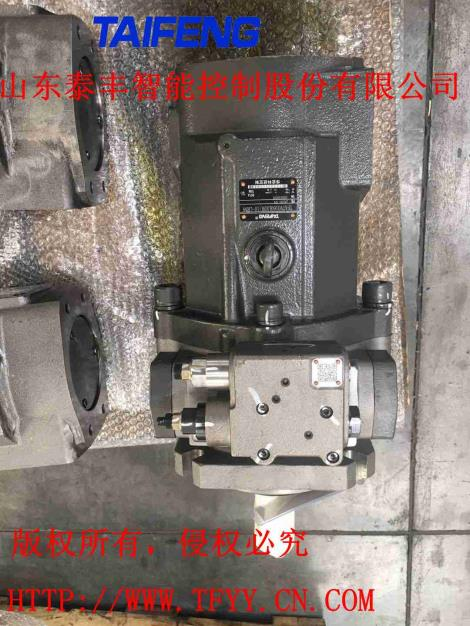 山東泰豐廠家直銷柱塞泵