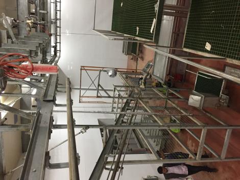 牛生产输送线