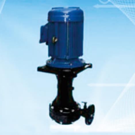 立式防腐循環泵廠家