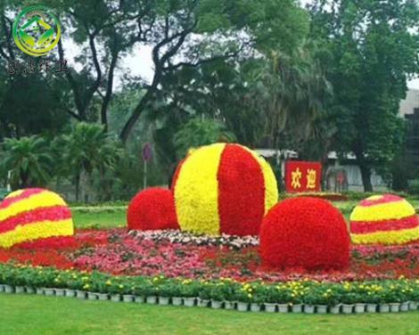 景觀花柱花球生產商