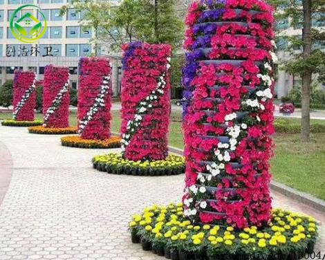 景觀花柱花球價格