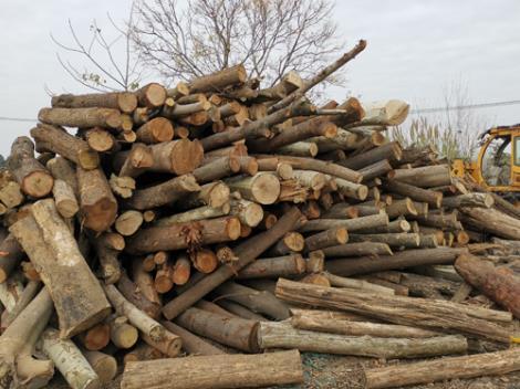 雜木木托盤半成品供貨商
