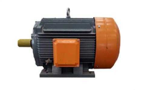 低压永磁电机
