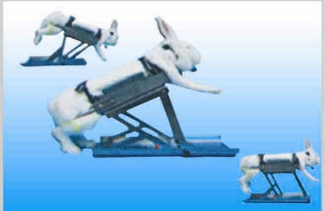 ZH-YLS-Q3不锈钢多功能兔固定架