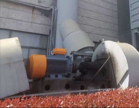 江苏低压电机