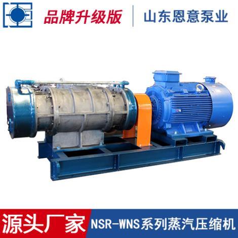 NSR-WNS系列蒸汽压缩机