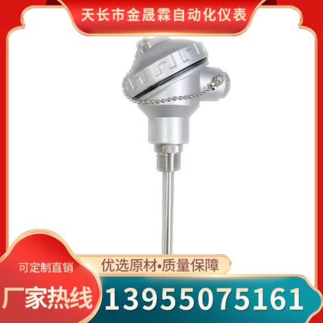 PT100铂热电阻